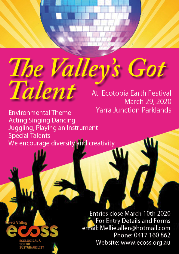 The Valley's Got Talent Show at Ecotopia Earth Festival 2020.